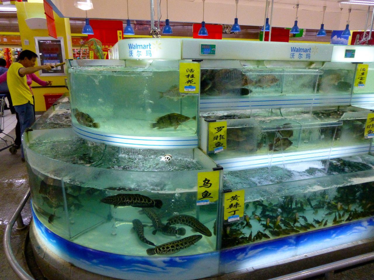 Fish at Walmart source...