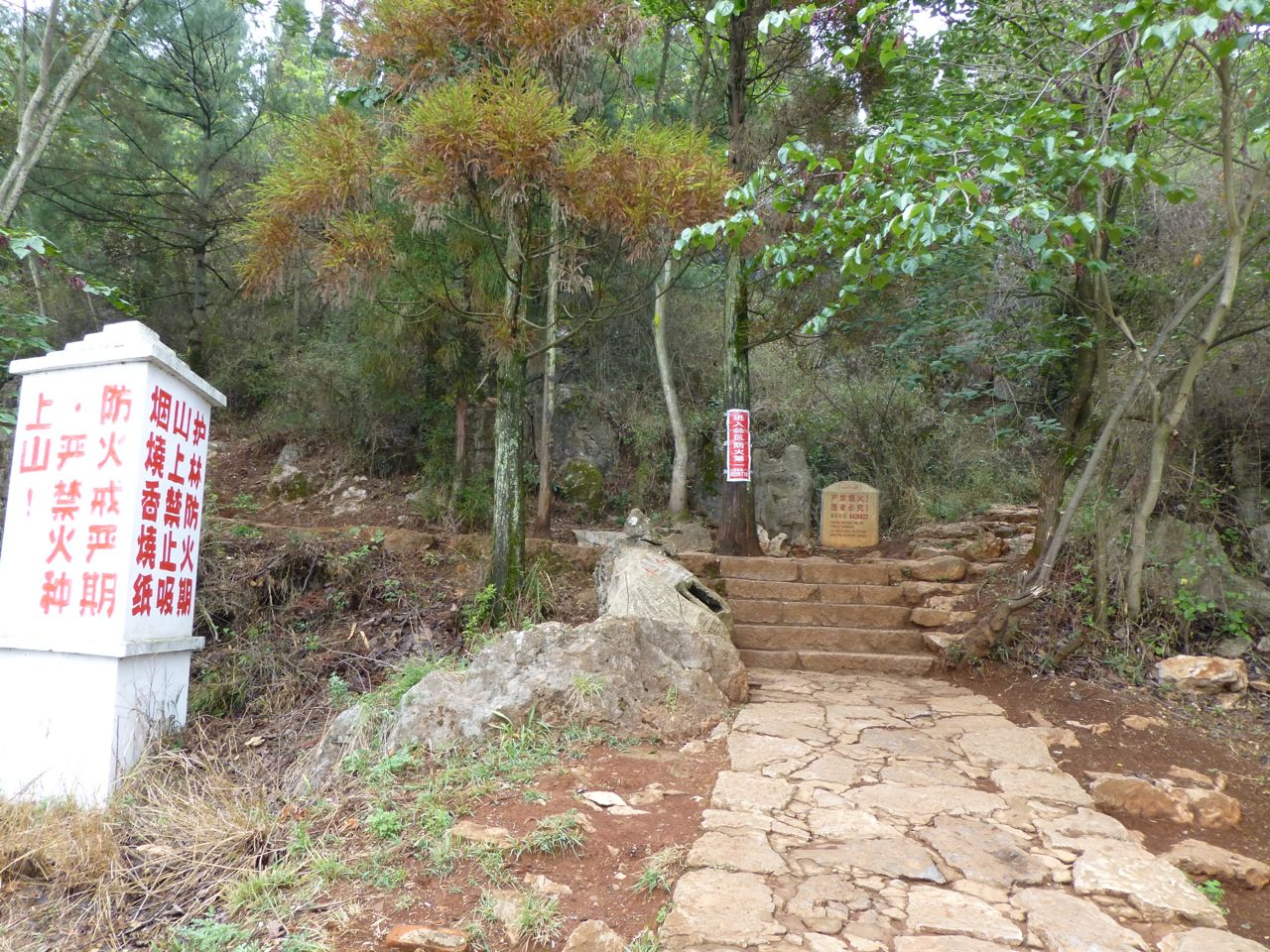 Typical path and mysterious signs